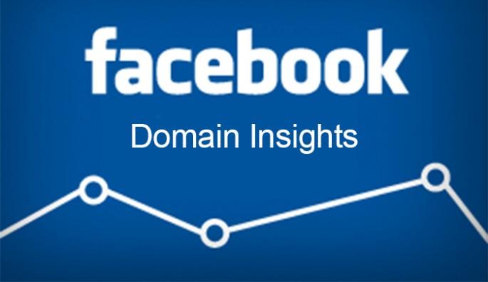 Thumb_facebook domain insight
